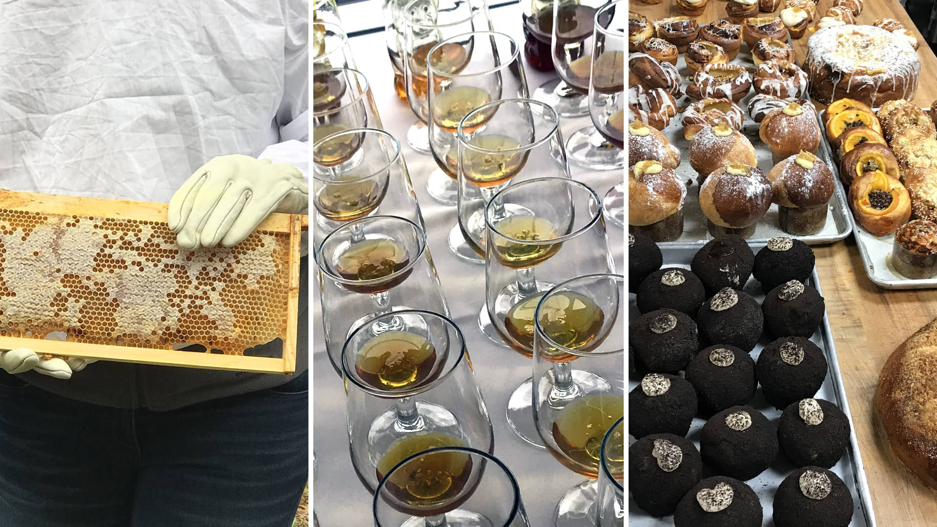 Baked goods, a honey tasting and an apiary tour at the 2018 Honey Baking Summit.